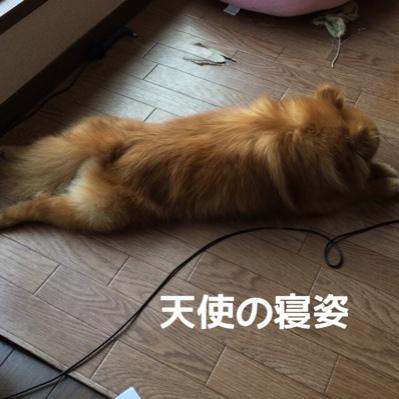 fc2blog_201406081953438a5.jpg