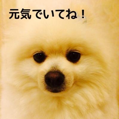fc2blog_2014061020013524d.jpg
