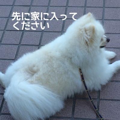 fc2blog_20140613230141737.jpg
