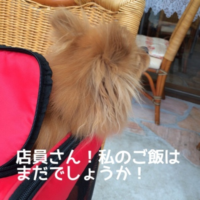 fc2blog_20140617192800cb8.jpg