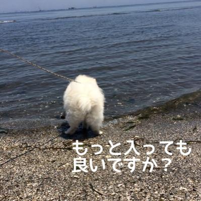 fc2blog_201406182002464f7.jpg