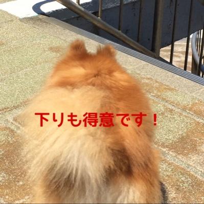 fc2blog_201406202000002d0.jpg