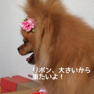 fc2blog_20140627211353e1c.jpg