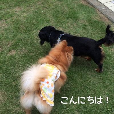 fc2blog_20140714195328254.jpg