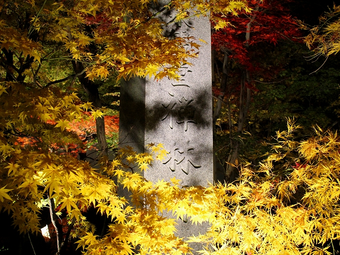永観堂ライトアップ 門前の碑