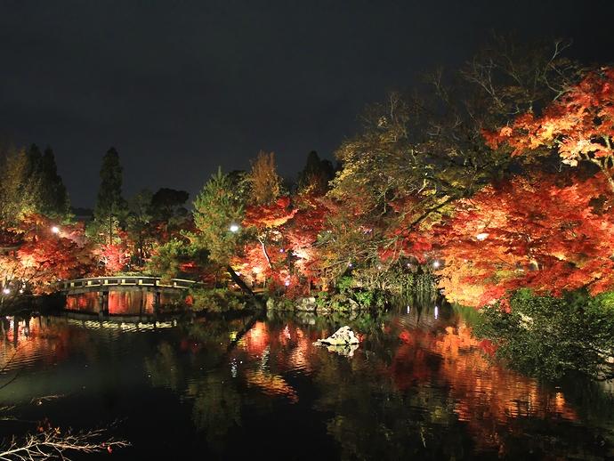 永観堂ライトアップ シャッタースポット放生池と紅葉