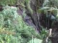 Tomborine 210414 8 アロマスクール マッサージスクール オーストラリア