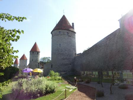 Tallinn Old Town 8