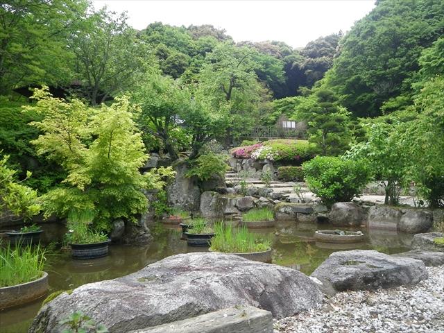菖蒲の咲く季節も綺麗でしょうね~