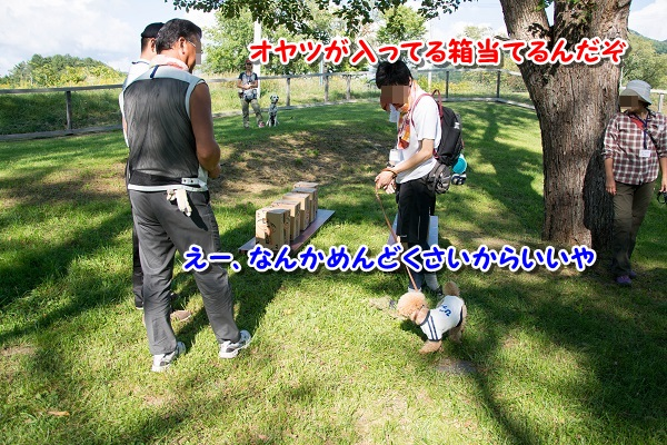 20140831-16.jpg