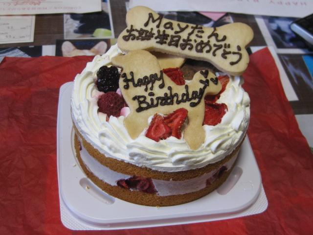 おっきなケーキだ!