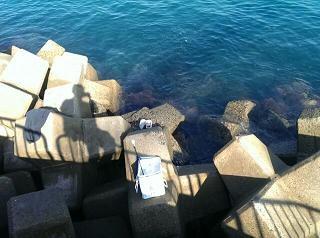 10月24日新波止 釣り場