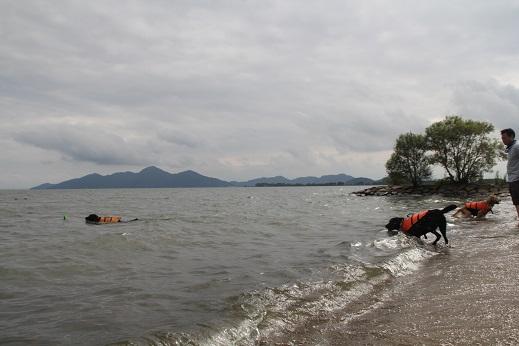 夢ちゃんと琵琶湖3