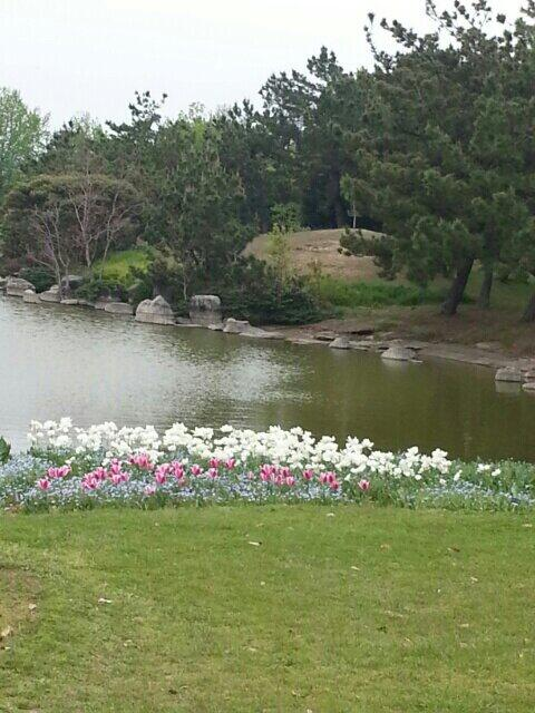 池があるンゴ
