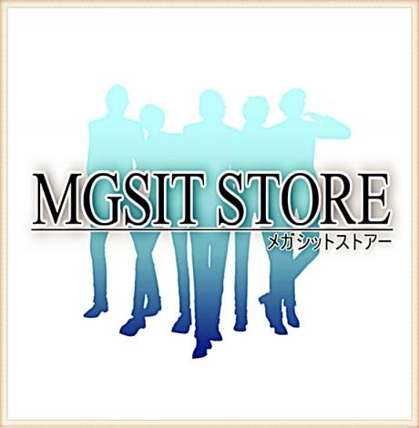 mgsit-store[main]02