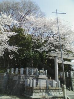 2014-04-05_09-07.jpg