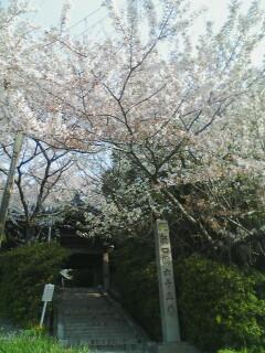 2014-04-10_07-28_0001.jpg