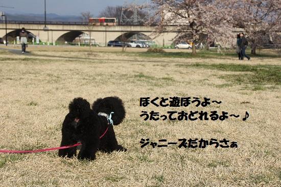 IMG_14962.jpg