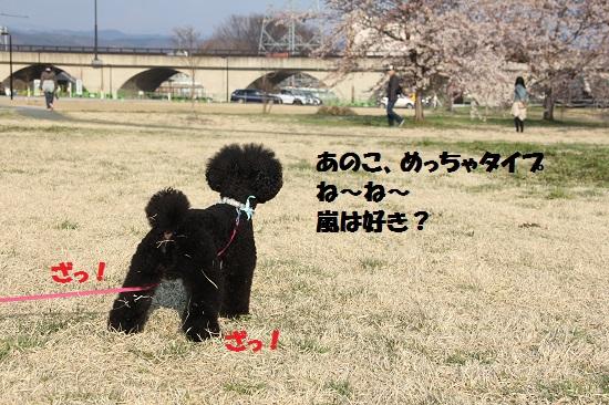 IMG_14992.jpg