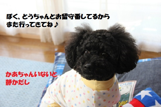 IMG_16172.jpg