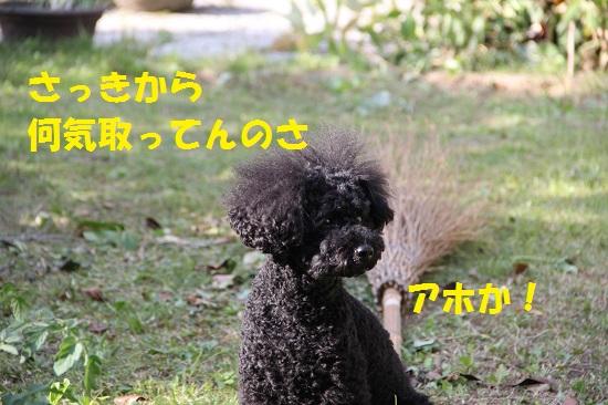 IMG_28692.jpg