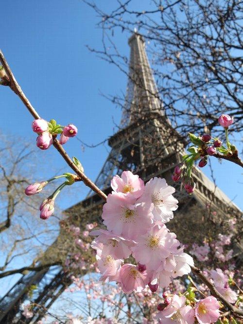 2014年3月9日パリ市内観光 045
