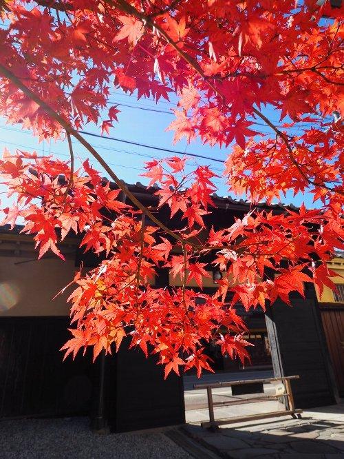 2014年10月29日高山 058