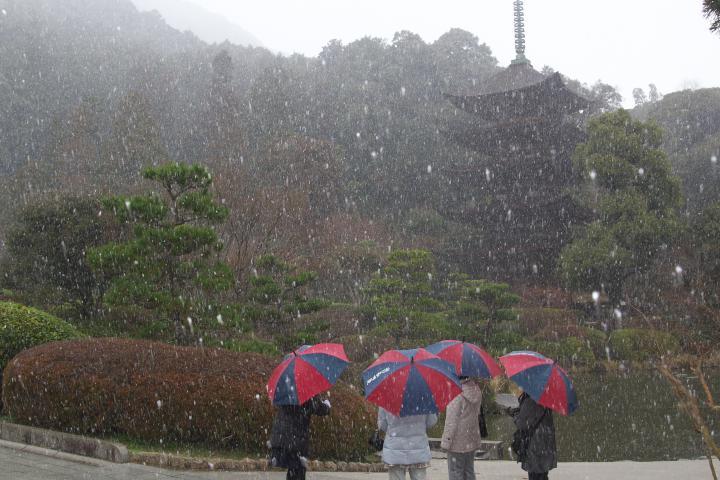 瑠璃光寺突然の雪06
