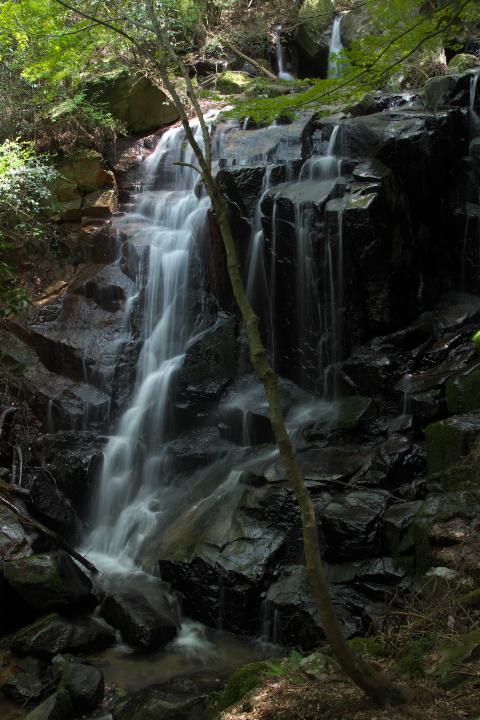 八代の魚切の滝1401