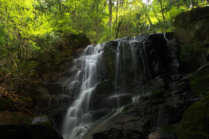 八代の魚切の滝1402