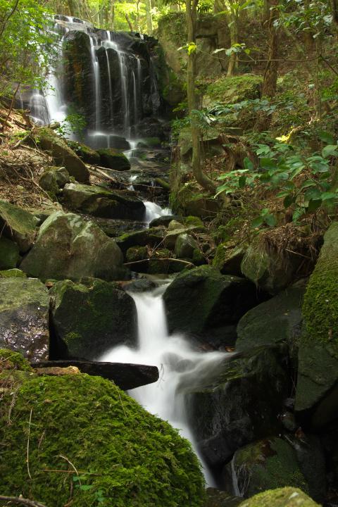 八代の魚切の滝1403
