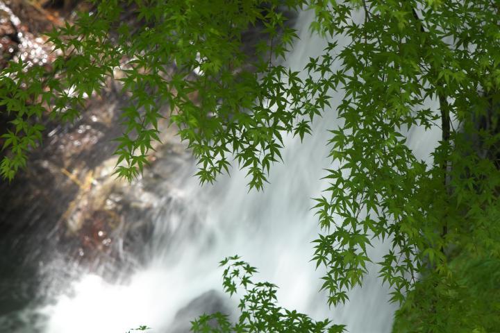 瀬戸兼の滝1404