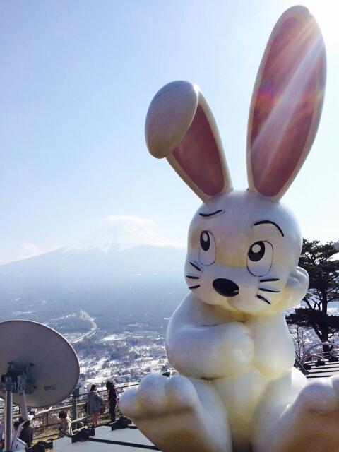 3月20日、朋子ブログのウサギ