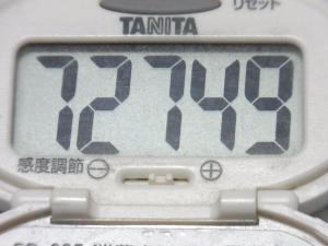 140830-251歩数計(S)
