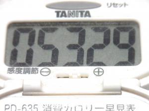 140831-251歩数計(S)