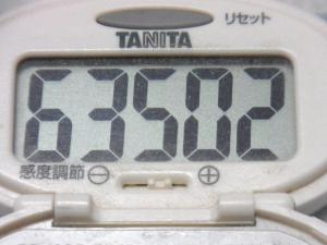 140907-251歩数計(S)