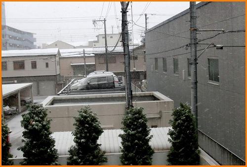 大雪9736