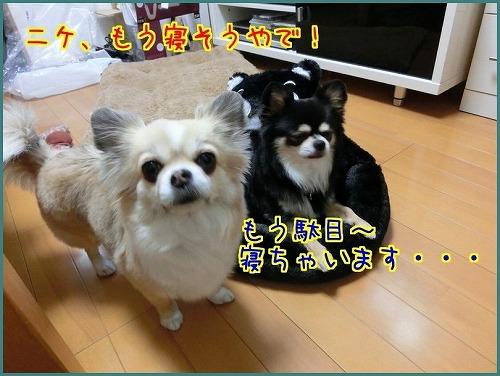 くまモン9806