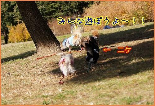 公園0996