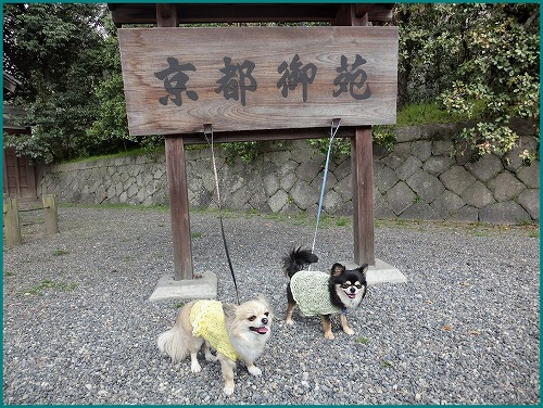 京都御苑0219