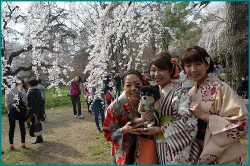 京都御苑5203