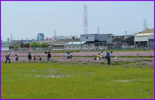 淀川河川5442