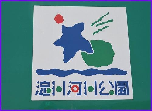 淀川河川5448