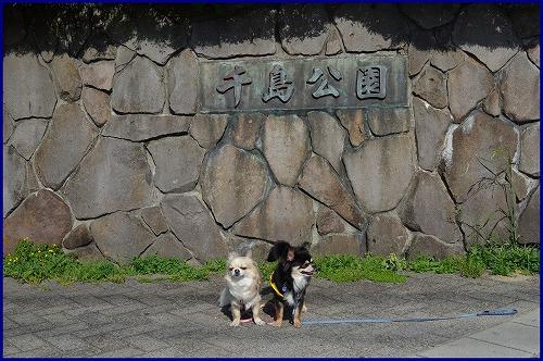 千島公園5501