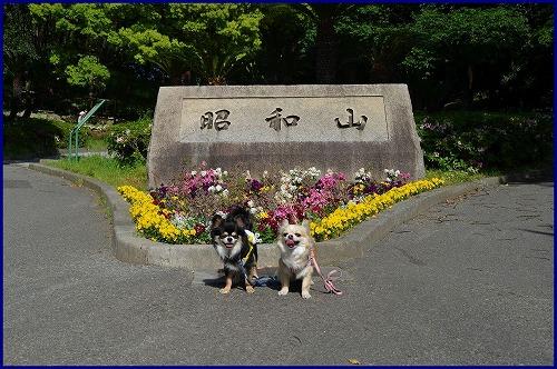千島公園5502