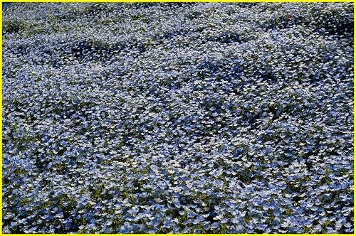 明石海峡5396