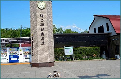 朝霧高原5609