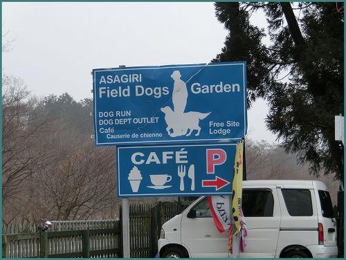 Garden9957