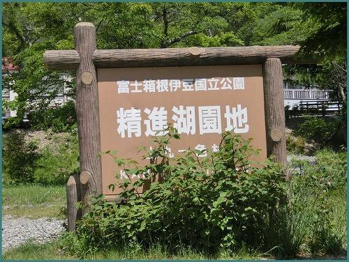 精進湖0562