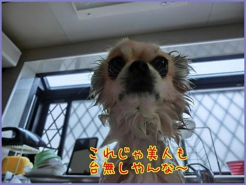 朝シャン0718